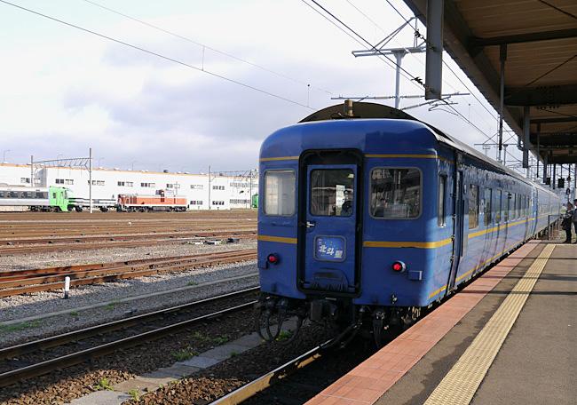 P1010128-1.jpg