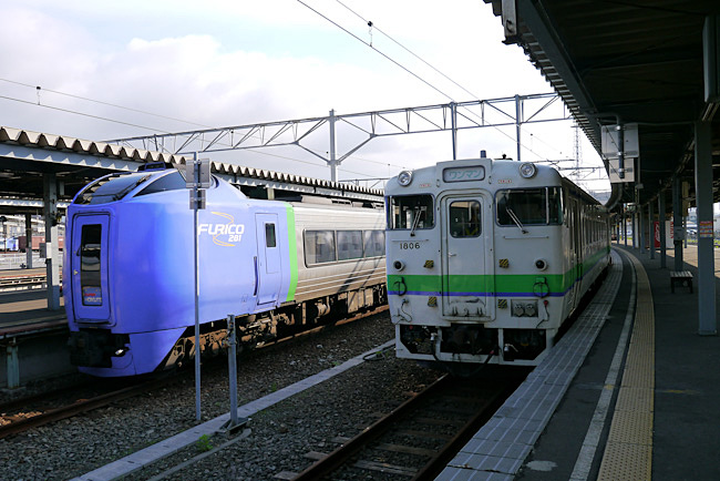 P1010141-1.jpg